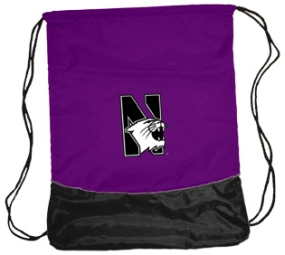 Northwestern Wildcats String Pack