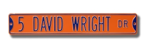 22 DAVID WRIGHT DR orange Street Sign