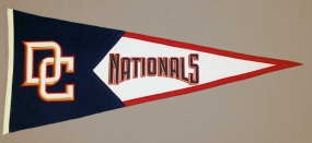 Washington Nationals Vintage Classic Pennant