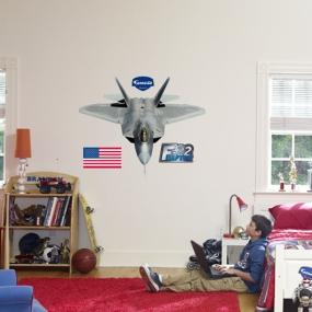 F-22 Raptor Fathead