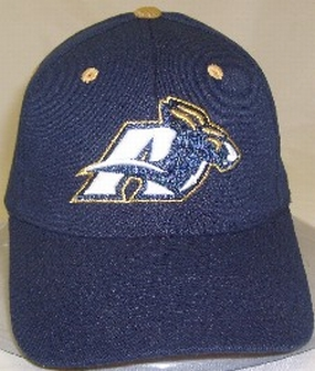 Akron Zips Team Color One Fit Hat