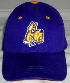 UAlbany Great Danes Youth Team Color One Fit Hat