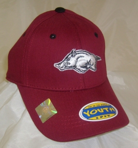 Arkansas Razorbacks Youth Team Color One Fit Hat