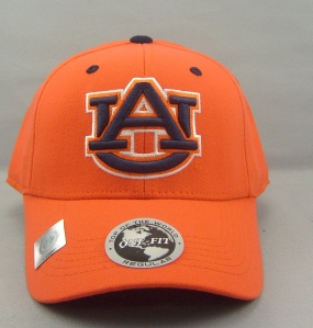 Auburn Tigers Team Color One Fit Hat