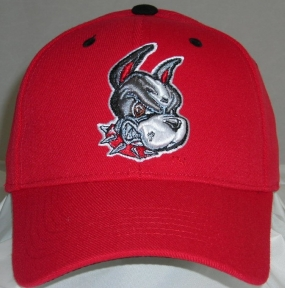 BU Terriers Team Color One Fit Hat