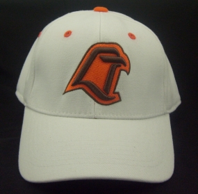 Bowling Green Falcons White One Fit Hat
