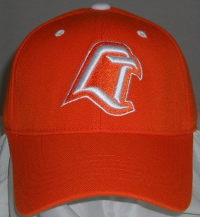 Bowling Green Falcons Team Color One Fit Hat