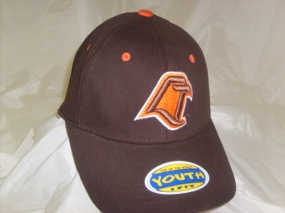 Bowling Green Falcons Youth Team Color One Fit Hat