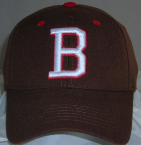 Brown Bears Team Color One Fit Hat