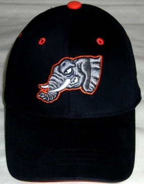 Fullerton Titans Youth Team Color One Fit Hat