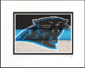 Carolina Panthers Vintage T-Shirt Sports Art