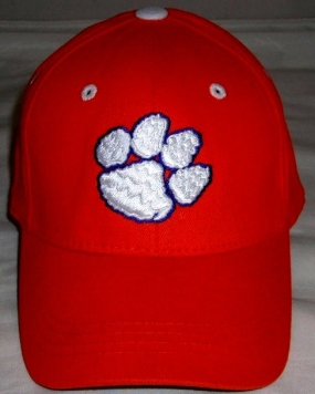 Clemson Tigers Youth Team Color One Fit Hat