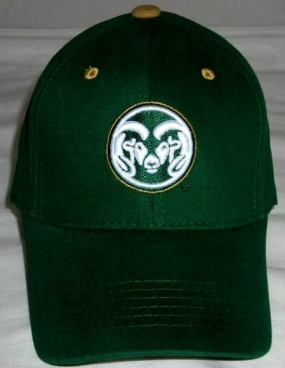 Colorado State Rams Youth Team Color One Fit Hat