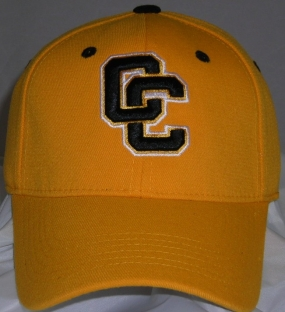Colorado College Tigers Team Color One Fit Hat