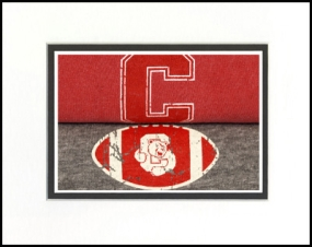 Cornell Big Red Vintage T-Shirt Sports Art