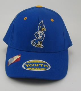 Creighton Bluejays Youth Team Color One Fit Hat