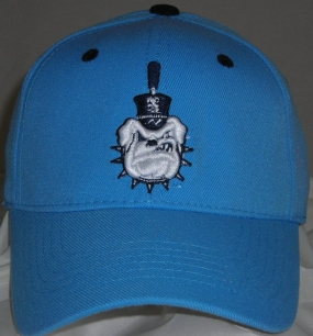 Citadel Bulldogs Team Color One Fit Hat