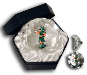 MICHIGAN STATE SPARTANS MASCOT DIAMOND GLASS