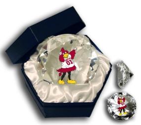 SOUTH CAROLINA U GAMECOCKS MASCOT DIAMOND GLASS