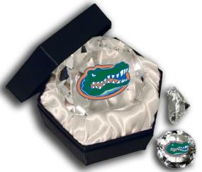FLORIDA U GATOR'S HEAD DIAMOND GLASS