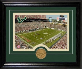 University of South Florida Raymond James Stadium Desktop Photomint
