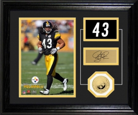 Troy Polamalu Player Pride Desk Top Photo Mint