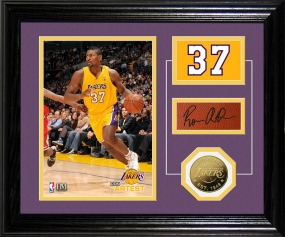 Ron Artest Player Pride Desk Top