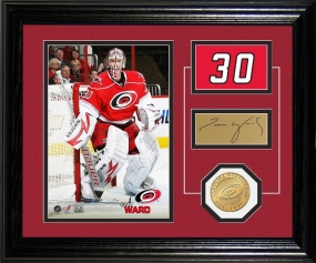 Cam Ward Player Pride Desk Top