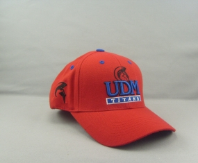 UDM Titans Adjustable Hat