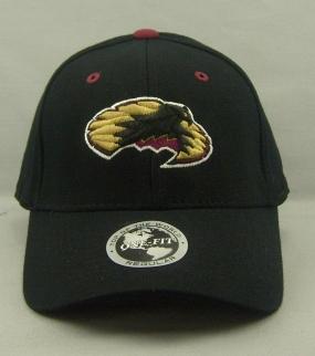 Denver Pioneers Black One Fit Hat