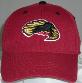 Denver Pioneers Team Color One Fit Hat