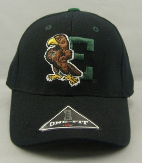 Eastern Michigan Eagles Black One Fit Hat