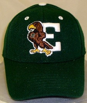 Eastern Michigan Eagles Team Color One Fit Hat