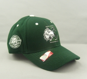 Eastern Michigan Eagles Adjustable Hat
