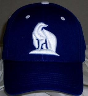 UAF Nanooks Team Color One Fit Hat