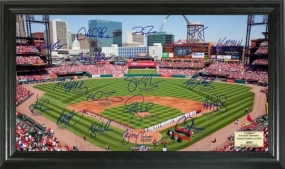 St. Louis Cardinals Signature Field Collection