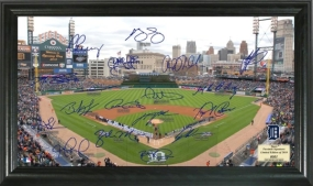 Detroit Tigers Signature Field Collection