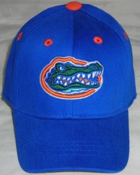 Florida Gators Infant One Fit Hat