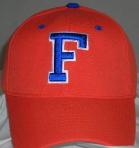Florida Gators Team Color One Fit Hat