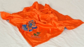 Florida Gators Baby Blanket and Slippers