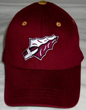 Florida State Seminoles Youth Team Color One Fit Hat