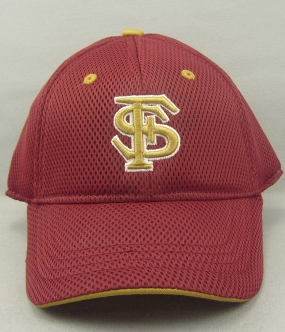 Florida State Seminoles Youth Elite One Fit Hat