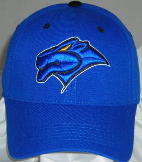 Georgia State University Team Color One Fit Hat