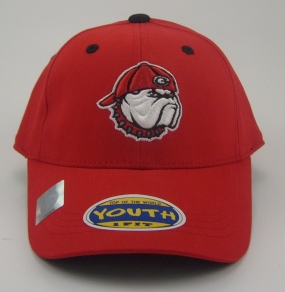 Georgia Bulldogs Youth Team Color One Fit Hat