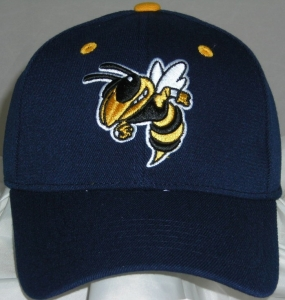 Georgia Tech Yellow Jackets Team Color One Fit Hat