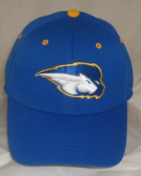 Hofstra Pride Team Color One Fit Hat