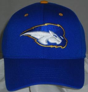 Howard University Bison Team Color One Fit Hat