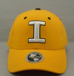 Iowa Hawkeyes Team Color One Fit Hat