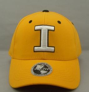 Iowa Hawkeyes Team Color One Fit Hat