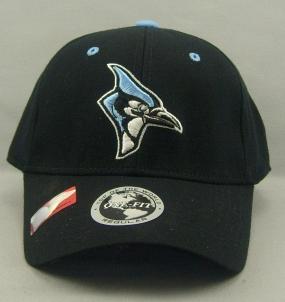 Johns Hopkins Blue Jays Black One Fit Hat